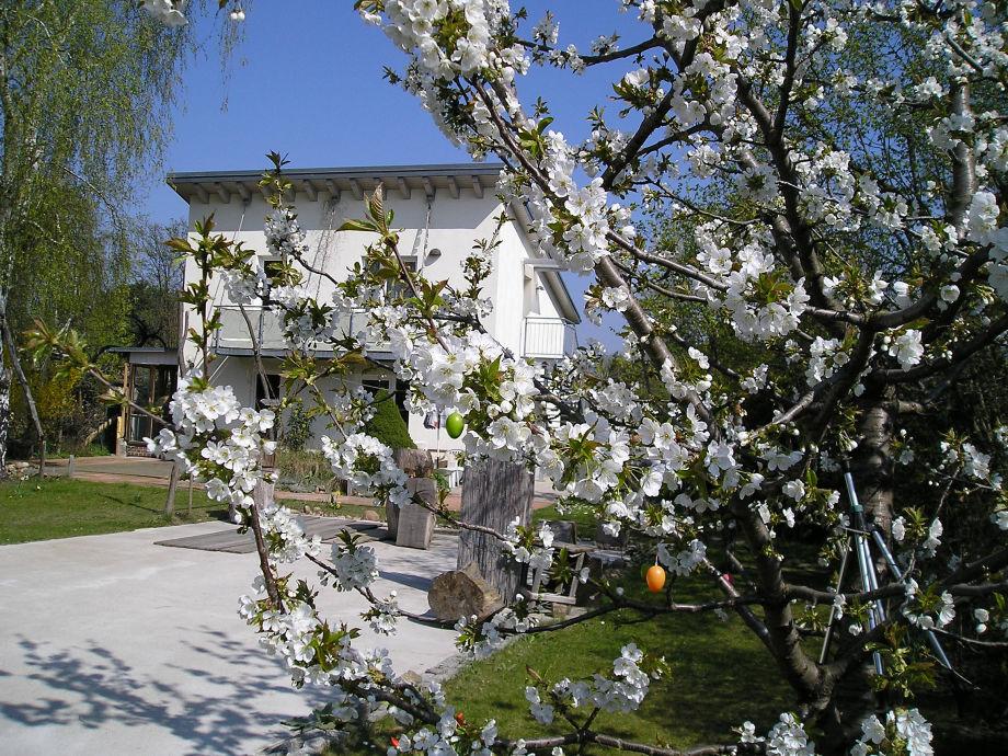 Lutizen-Quartier im Frühling