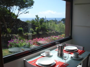 Holiday house Casa Caloura