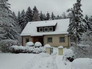 "Holiday house ""Harz Familienhaus"""