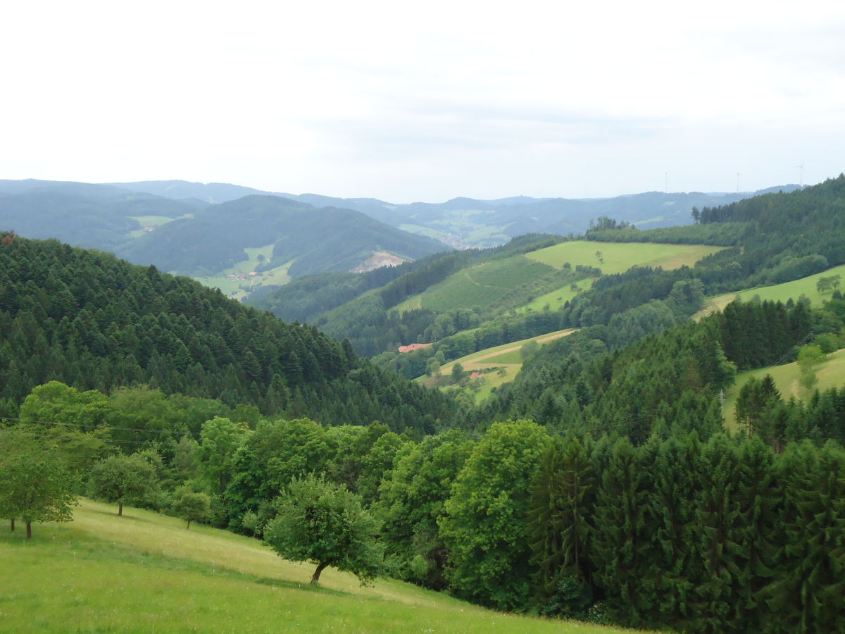 Ferienwohnung villa zapf schwarzwald kinzigtal frau for Ferienwohnung im schwarzwald