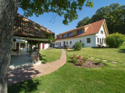 Lavendel - Der Arkadenhof