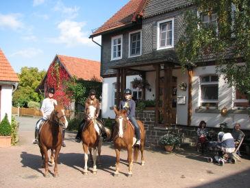 Pension Reiterlandhof Kamm