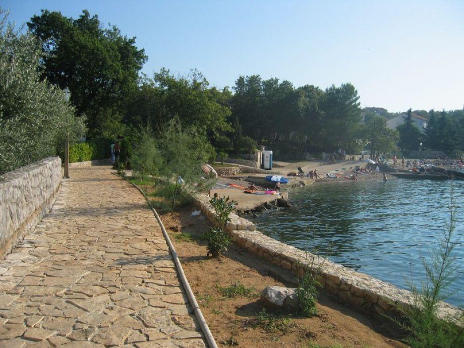 Villa Pool Vantacici