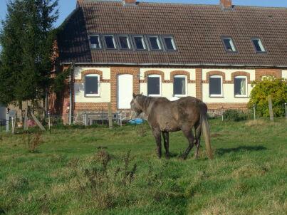 2 im Landhaus Moor