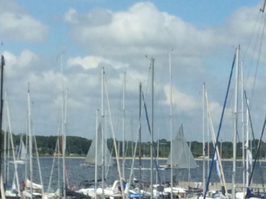 Bad Dusche Vorm Fenster : Ferienwohnung Oceanview direkt am Yachthafen ...