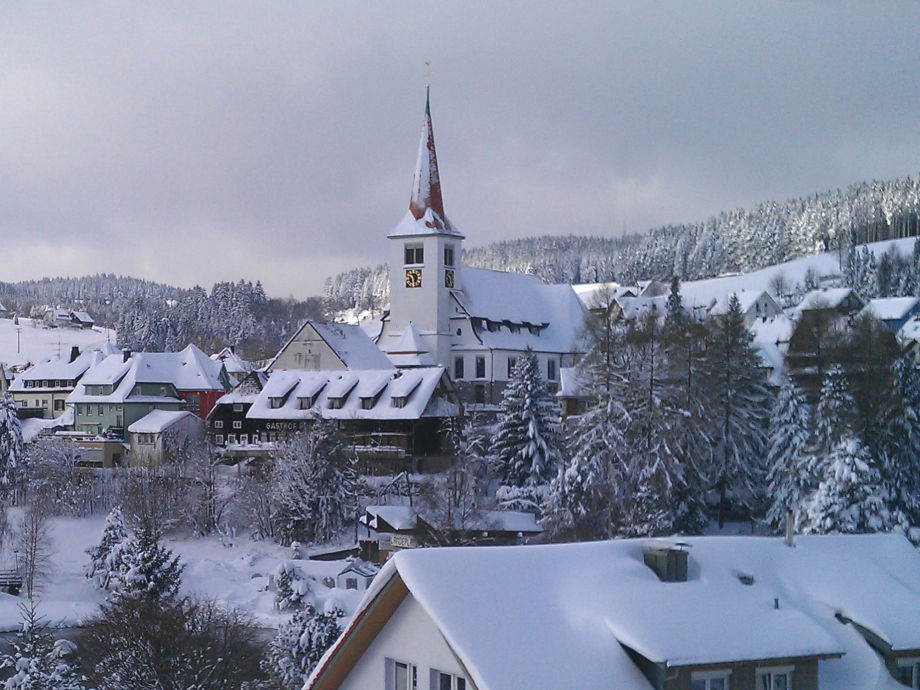 Winter-Blick aus dem Fenster