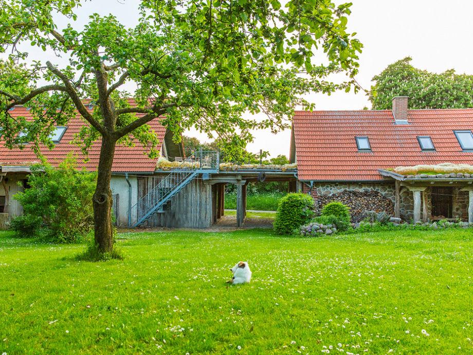 Ferienhaus Grethe mit Innenhof