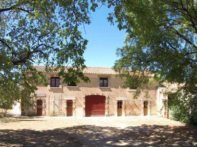 auf dem Weingut in Languedoc