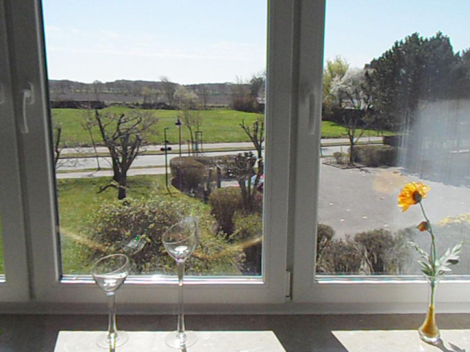 Blick aus Wohnzimmer