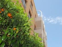 Moderne Ferienwohnung | Am Yachthafen |  Im Herzen der Altstadt nahe Strand