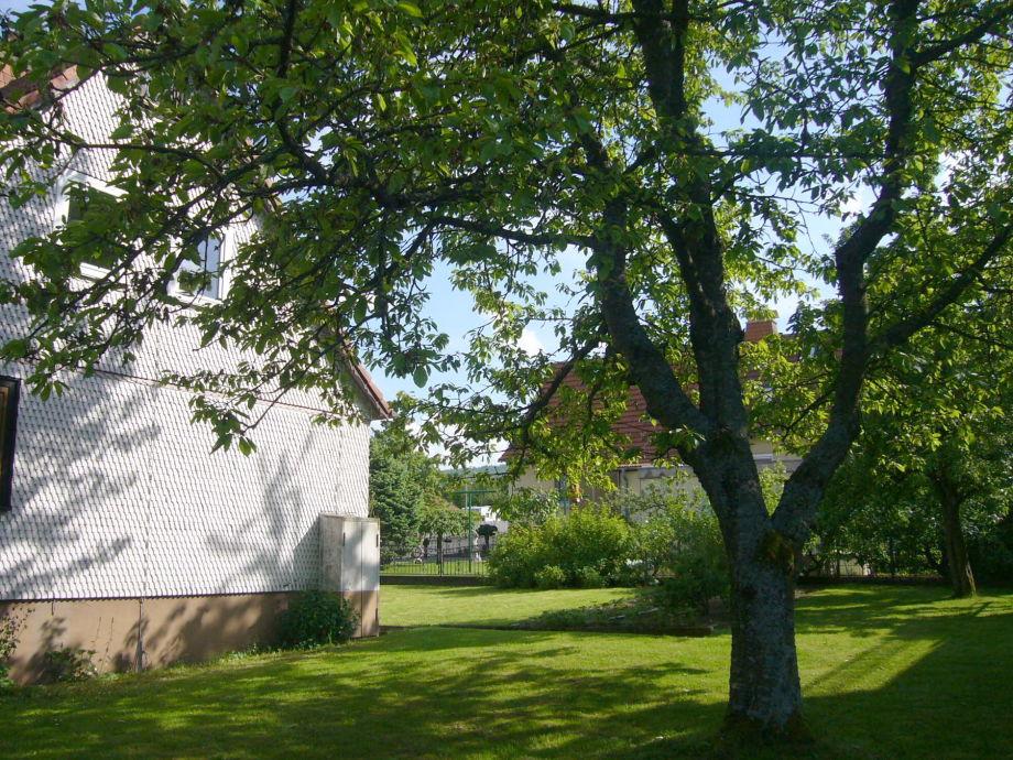 Großer Obstgarten mit Liegewiese