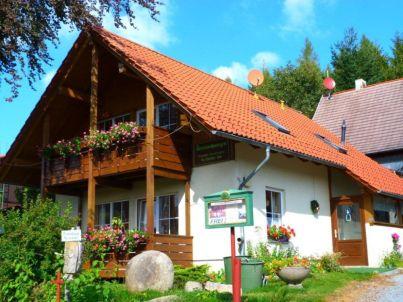 Finkenstube im Haus Sauerzapfe - Harz