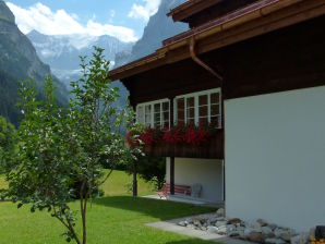 Holiday apartment Chalet Firn