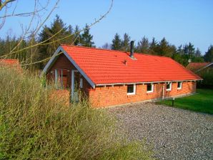 Ferienhaus Fjand Hygge Hus (C397)