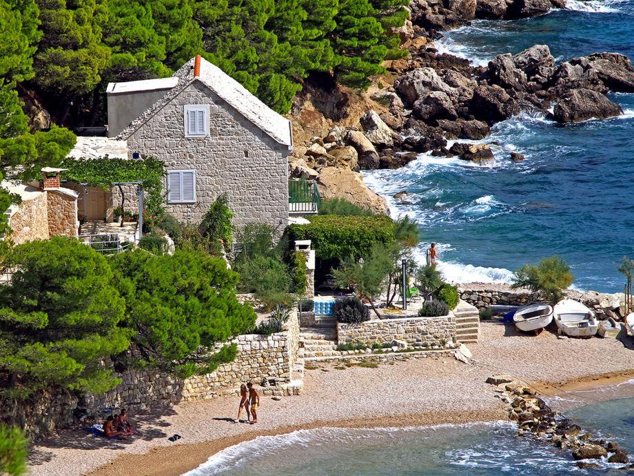 Strandunterkunft umgeben von üppiger Vegetation