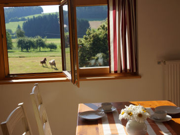 Holiday apartment Panoramablick Höllbachtal