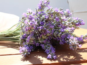 Holiday apartment Lavanda
