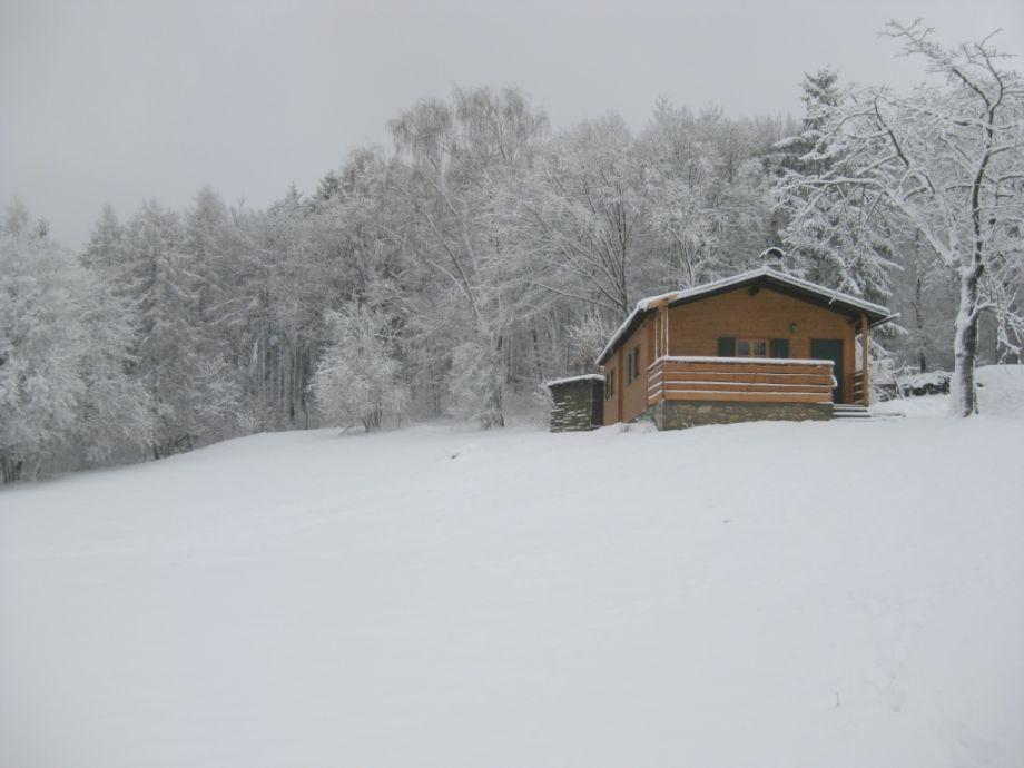 Im Winter vorm Wald