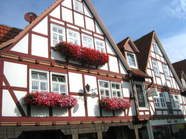 Holiday apartment Cheap app. in beautiful area near Edersee