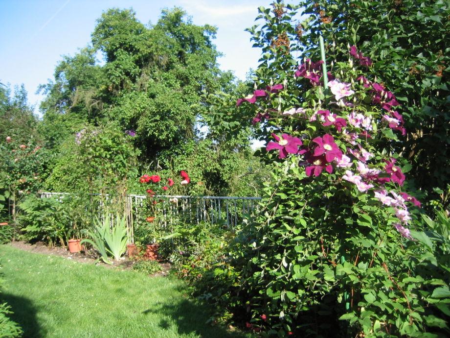 Der Garten mit Sitzplatz, Grillecke und Gartenmöbeln.