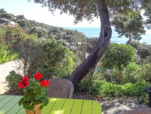 Terraced house with beautiful sea views in Carqueiranne