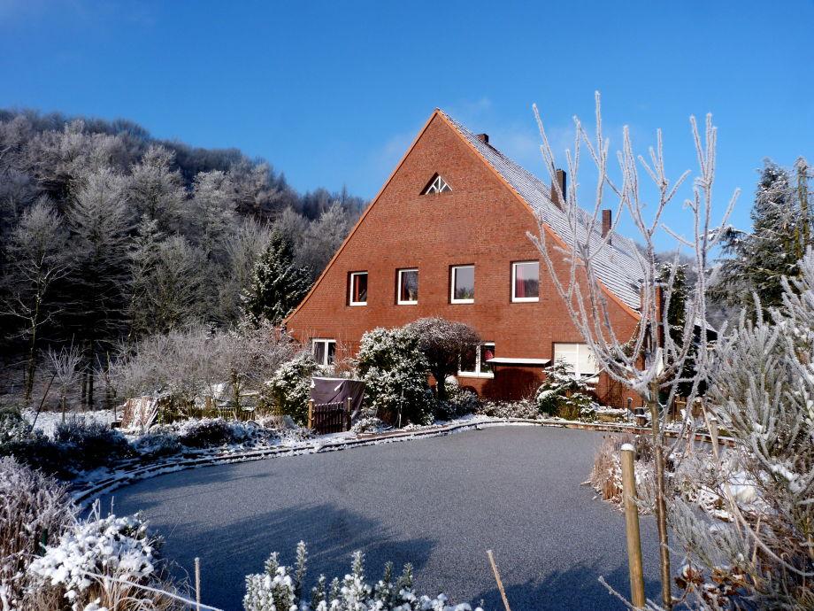 Wohnung, Garten u. Schwimmteich im Winter `16