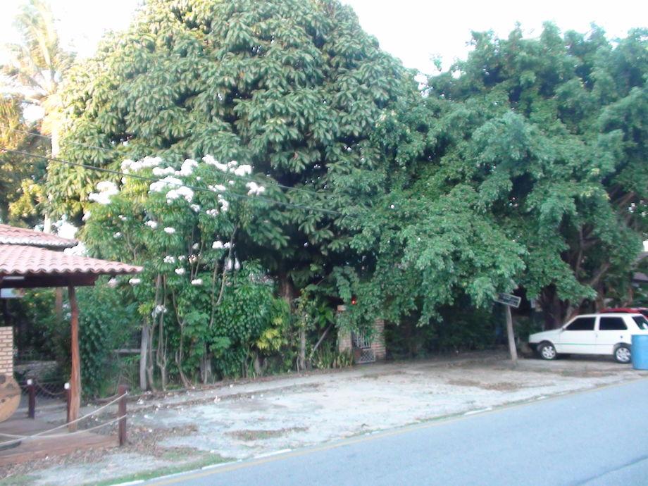 ferienhaus vila das flores natal rio grande do norte firma terra brasil turismo firma. Black Bedroom Furniture Sets. Home Design Ideas