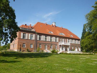 Platane im Schloss Pütnitz