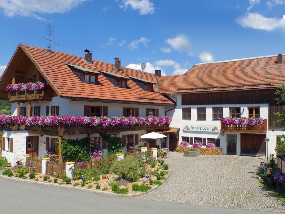 Forellen - Reiterhof