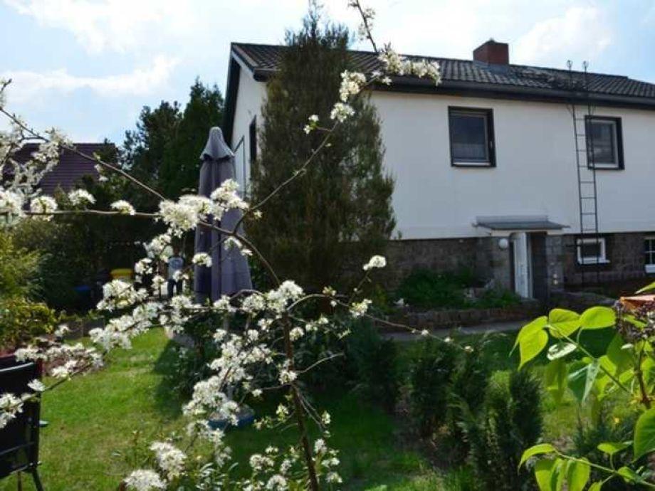 Ferienwohnung 1 im Haus Tulpe Zinnowitz Ostsee Insel