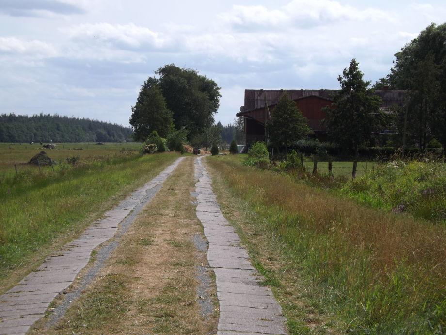 Willkommen auf dem Frieslandhof
