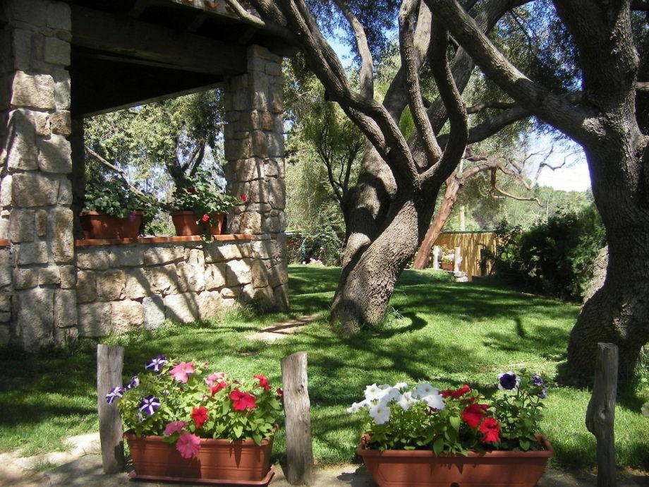 wunderschönes Grundstück mit Rasen und Bäumen