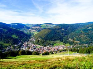 Ferienwohnung Todtnau-Silberbergblick