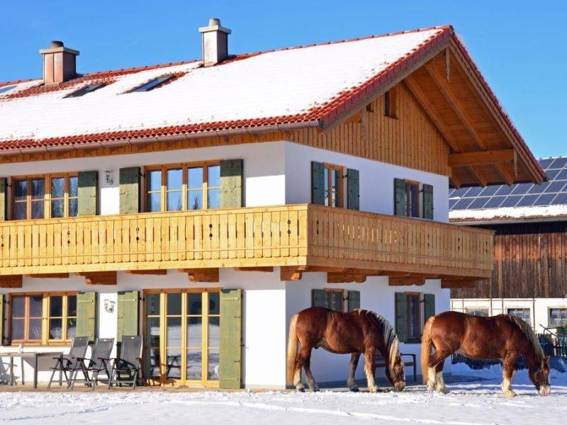 Ferienwohnung Langerhof