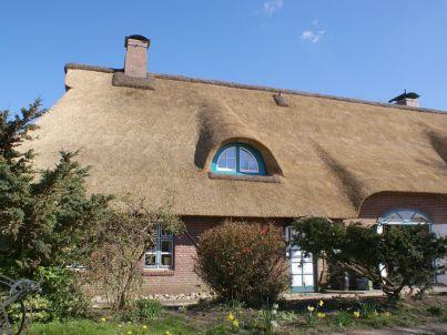Reetdach Ferienhaus-Hälfte am Deich