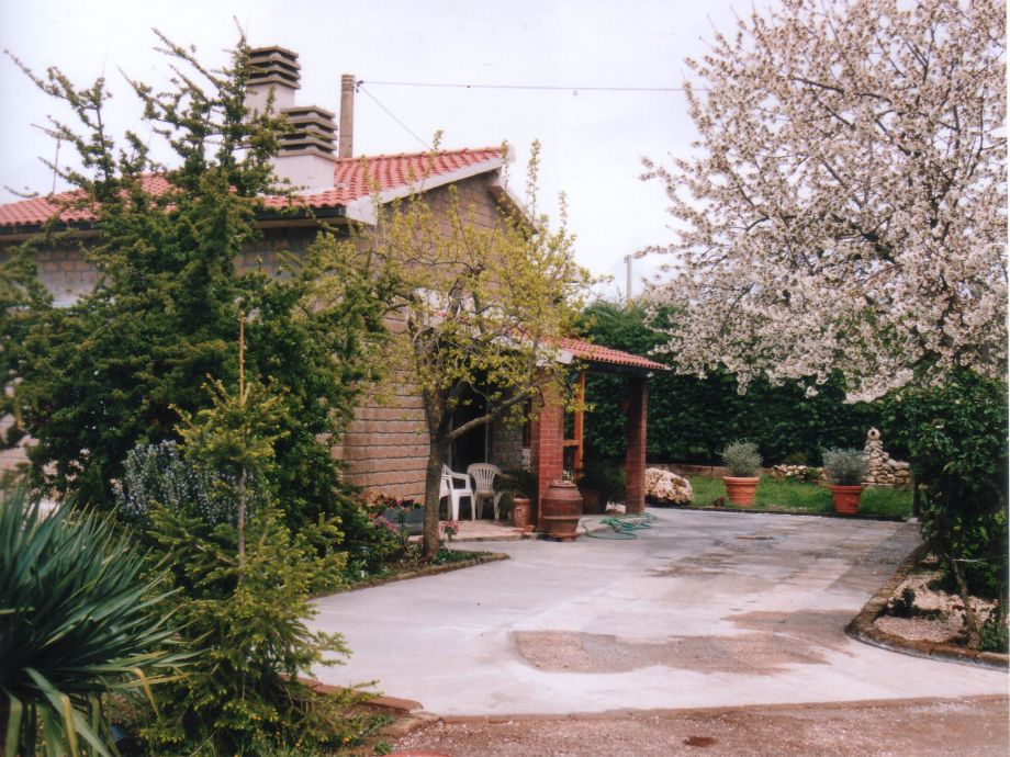 IL VICELLO in spring