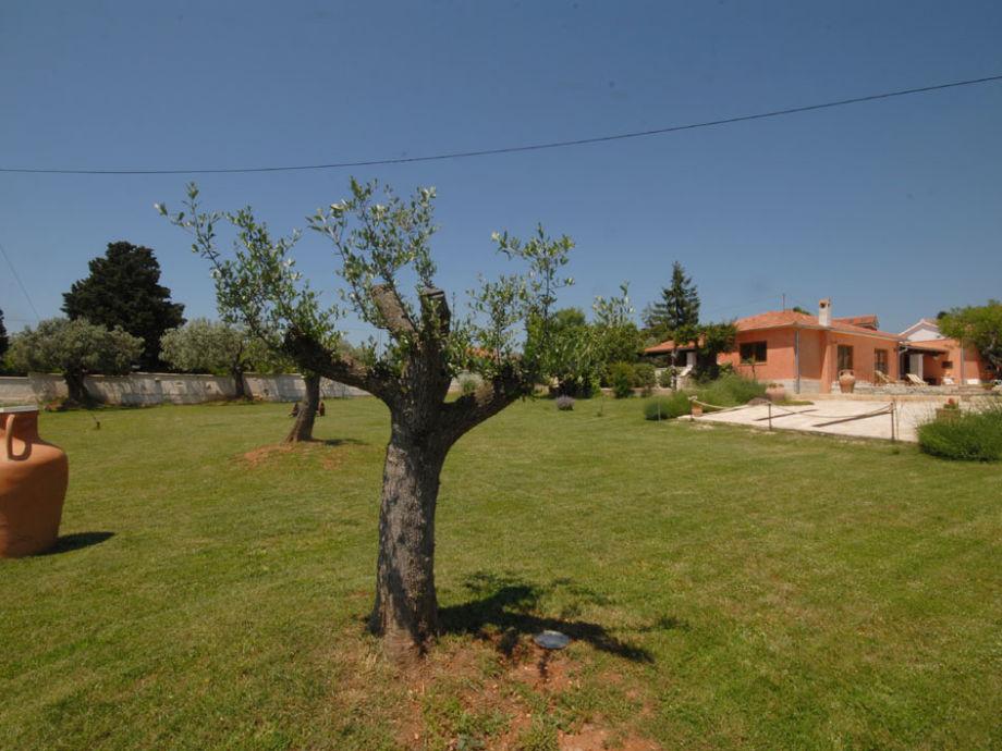 villa meerblick vom pool fa ana istrien firma obrt za turizam bonsai mr ivan ugar. Black Bedroom Furniture Sets. Home Design Ideas