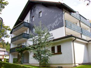 Apartment H.O.M.E. Suites Braunlage 1