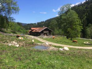 """Ferienwohnung Biohof Schwaig """"Elfenspiegel"""""""
