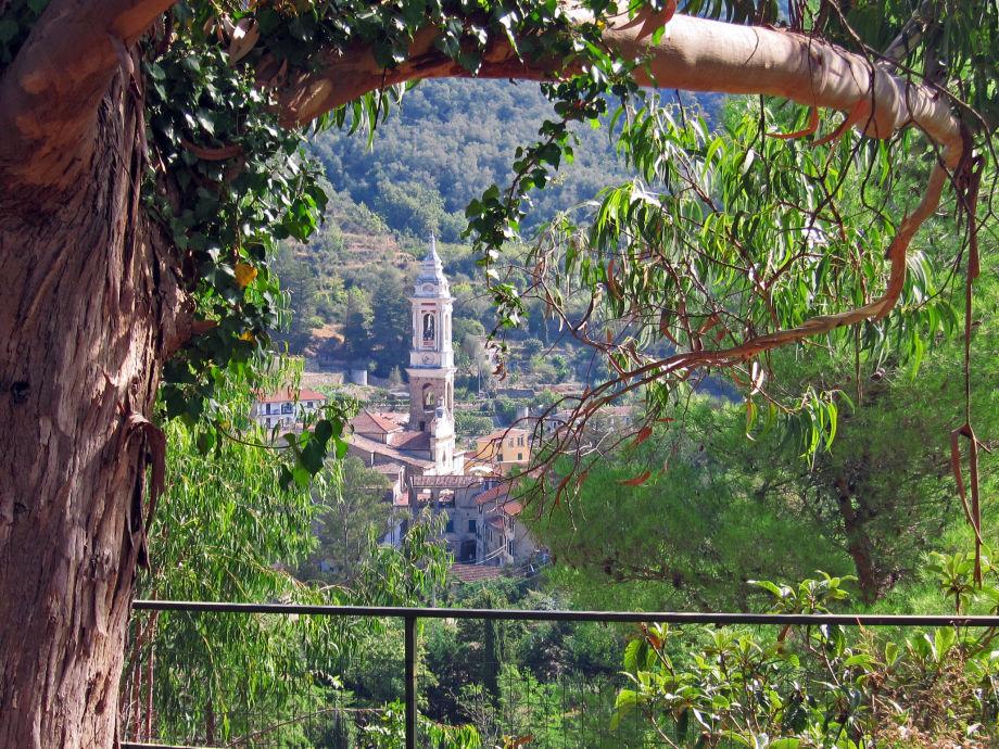 Blick durch den Eukalyptusbaum zum Dorf