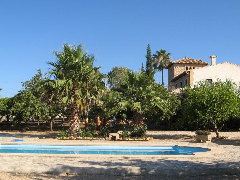Finca mit Pool und Palmen