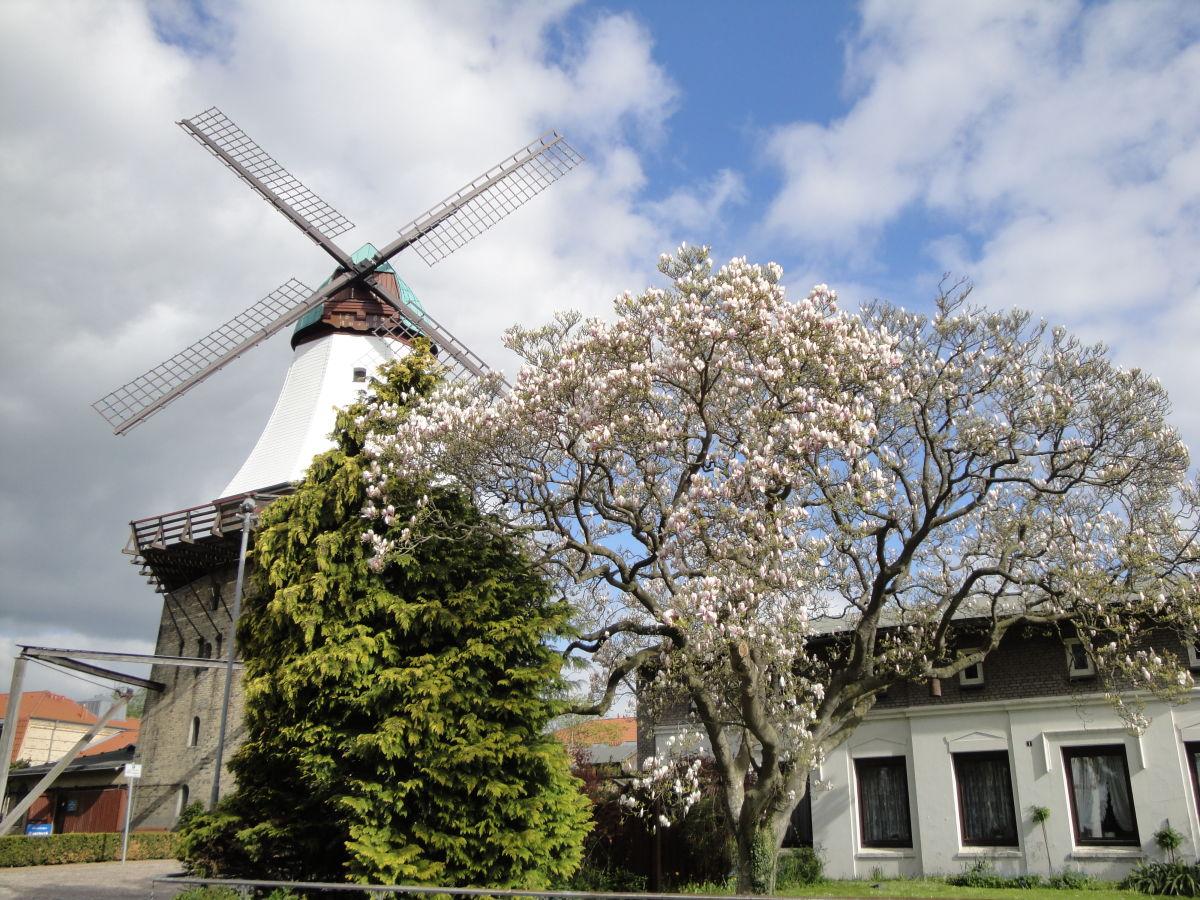 Ferienwohnung Kleine Wassermühle, Kappeln, Ostsee - Frau Jördis ...