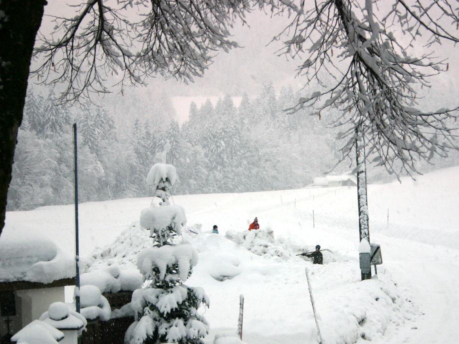 Winteraussicht vom Fenster