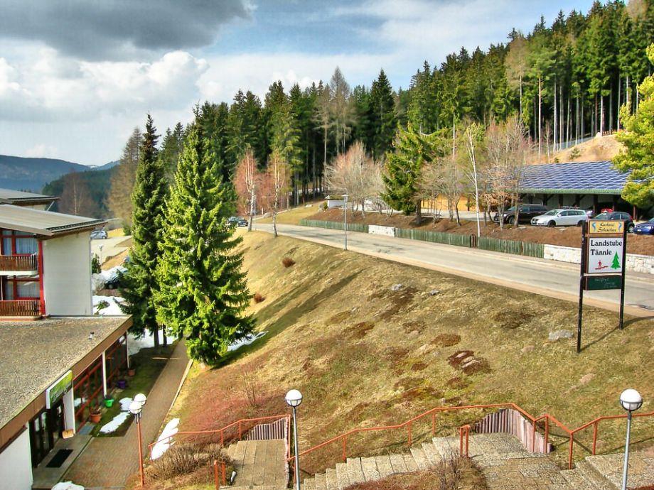 Herzlich willkommen im Schwarzwald