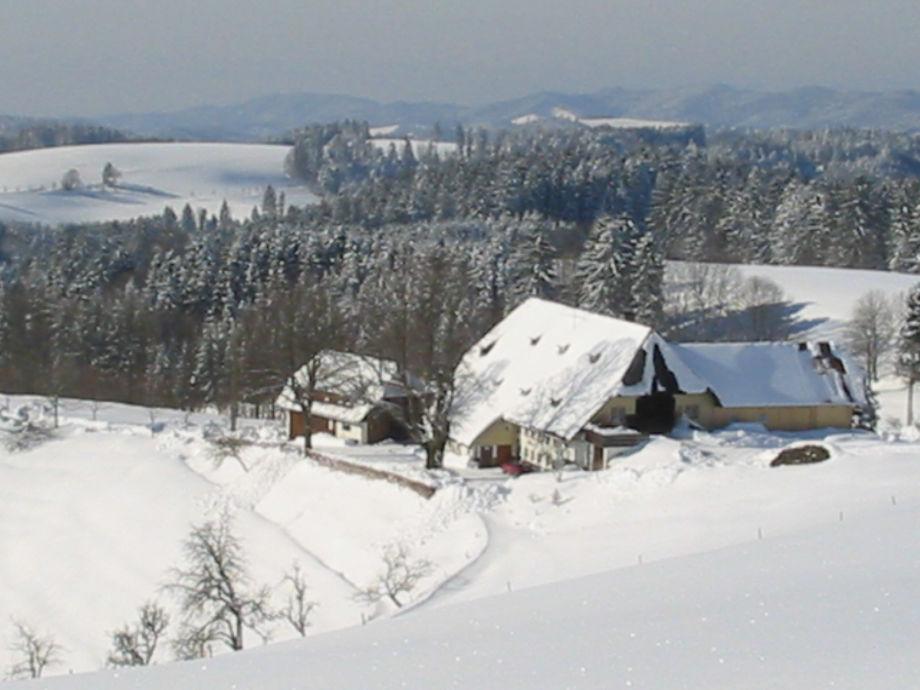 Blick in die schöne verschneite Landschaft