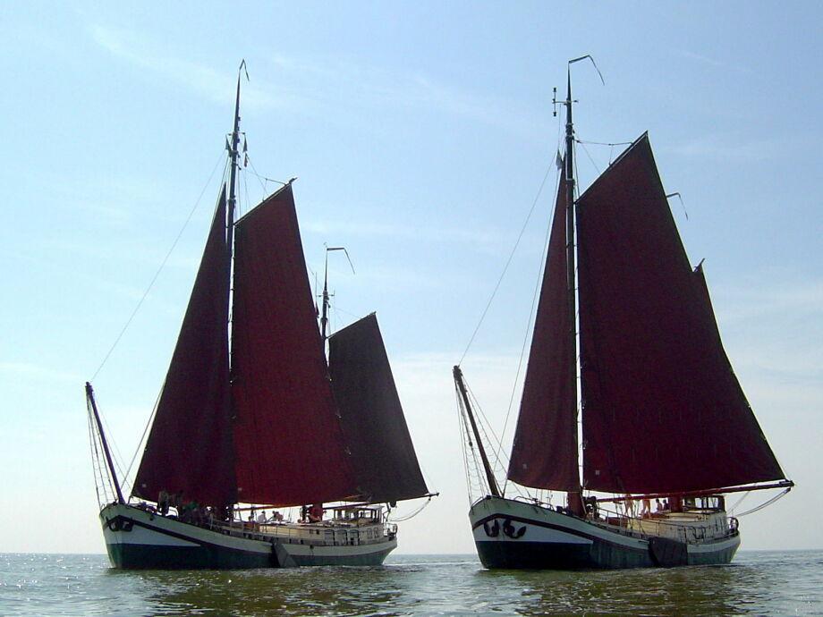 Klipper De Hoop und Stella Frisia auf dem IJsselmeer