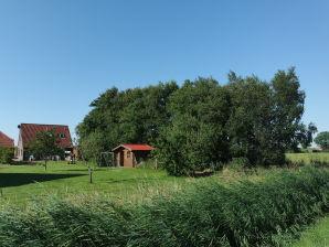 Ferienhaus Robbe