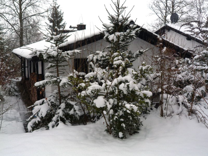 Ferienhaus Ginster