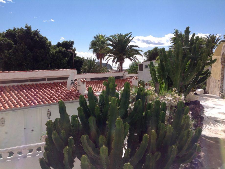 Terrasse mitten im Grünen mit Meerblick