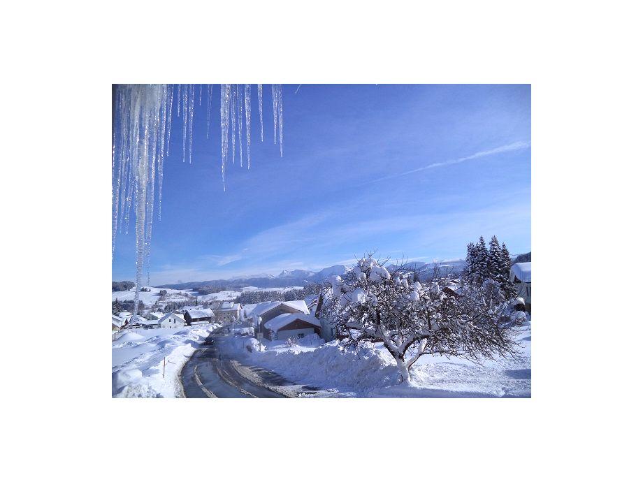 Sicht im Winter